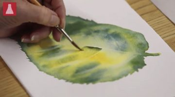 A leaf being painted