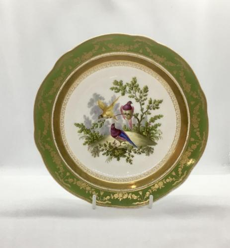 sevres style with beaded rim
